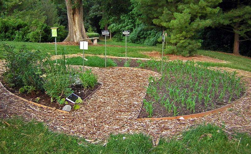 Full garden in June