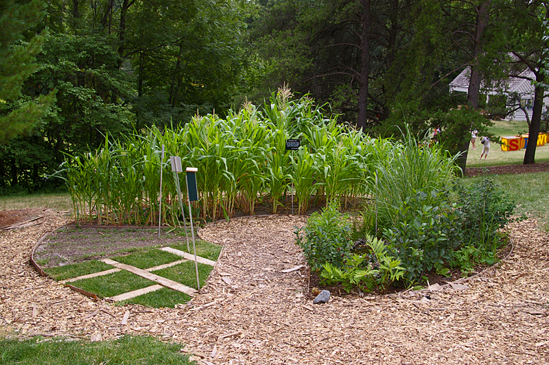 Internal Divisions – A Land Use Garden