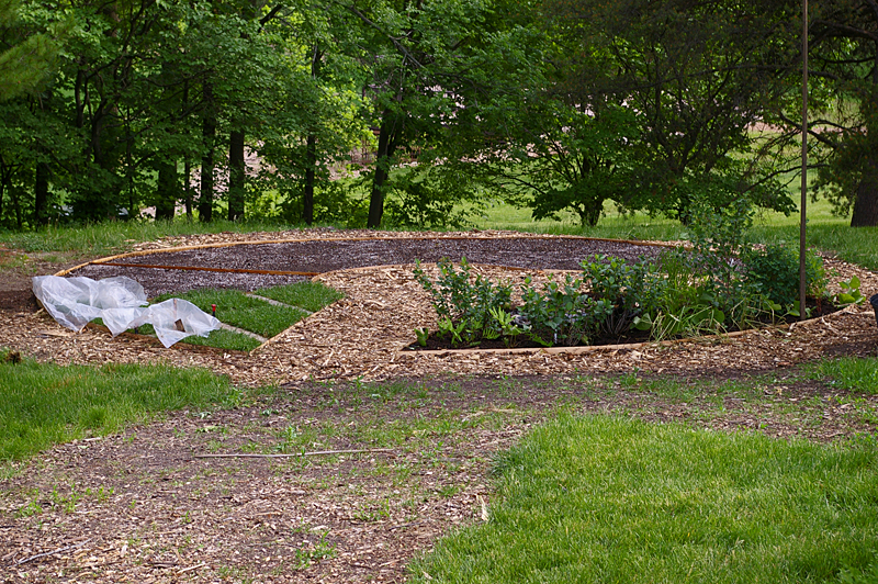 Full garden in May